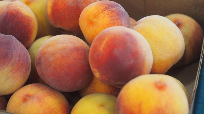 Peach Tree Farm in Boonville sells peaches at the Sedalia Area Farmers' Market Tuesday.