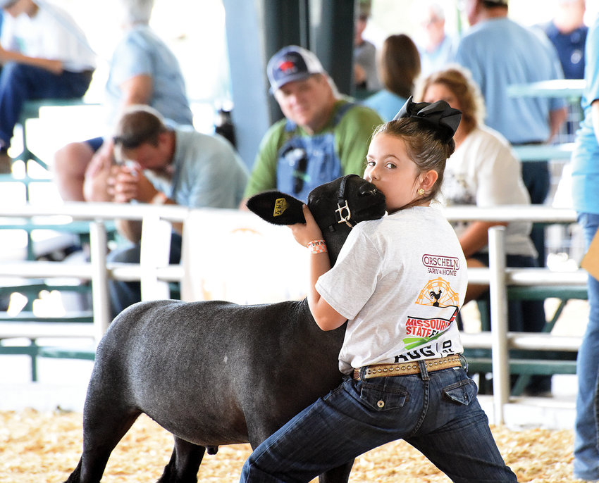 A young girl steadies her lamb in the show ring, at the 2020 Missouri State Fair during the 4-H Market Lamb Show hosted in the Sheep Pavilion.