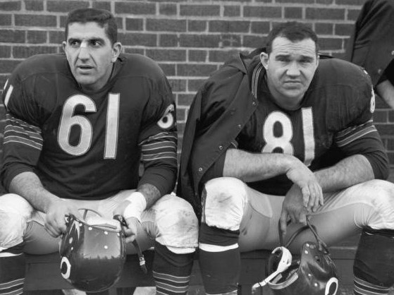 Doug Atkins (#81), the ferocious 6'8 defensive end who played for the Chicago Bears from 1955-'66.