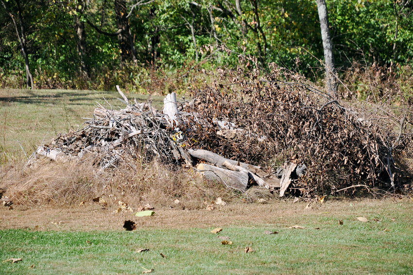 The two have struggled to drag the smaller debris to a pile at the edge of their property but will have to hire someone else to get rid of the larger pieces.