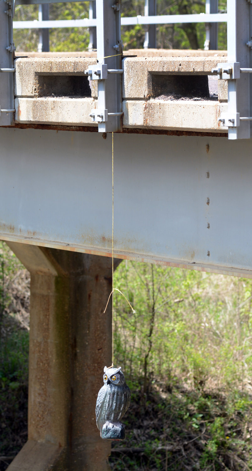 Plastic owls hang from the bridge over Mistaken Creek in Osage County to prevent swallows from nesting under the structure.