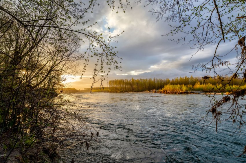 Skagit River sunrise. Photo by Andy Porter Images.